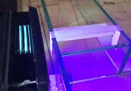 Incollaggio vetrina con mensole